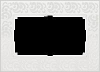 WL05-Frame-01-DBL-white Рамка для двойной розетки (Белый) a033483