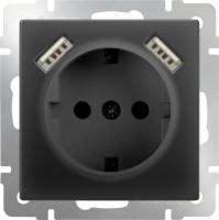 WL08-SKGS-USBx2-IP20 / Розетка с заземлением, шторками и USB х2 (Черный) a033477